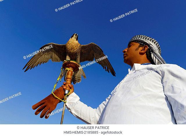 United Arab Emirates, Dubai, desert, falconer