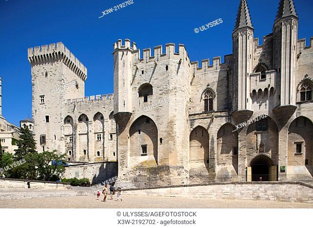 palace of the popes, avignon, provence, france, europe