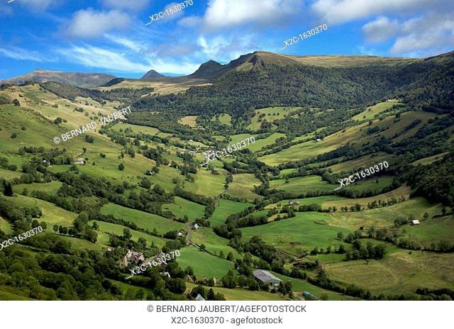 Valley at the foot Puy Mary in Cnatal  Auvergne  France