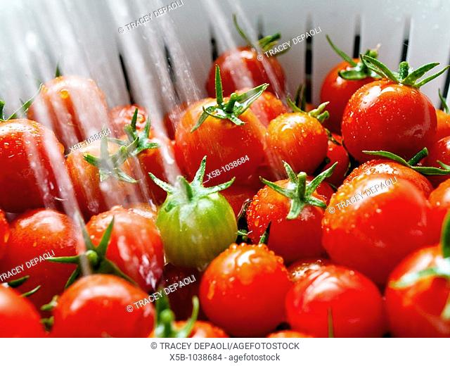 Ripe red cherry tomatoes in white colander  Steam of water washing them  close up  soft, blurred water stream, eye view, horizontal