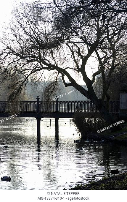 Silhouette view of the bridge over the lake at the bird sanctuary, Regent's Park, Camden, London, NW1, England