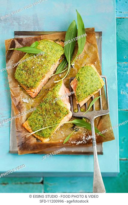 Salmon with a herb crust