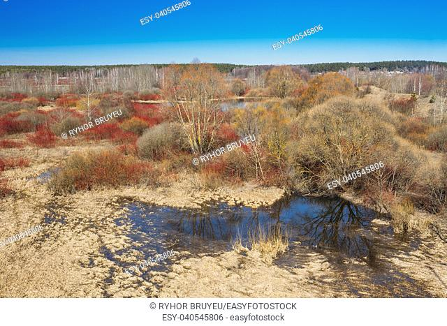 Spills Of River In Spring Season In Belarus. Sunny Spring Day. Belarusian Beautiful Landscape. Yellow Dry Grass Under Blue Sunny Sky
