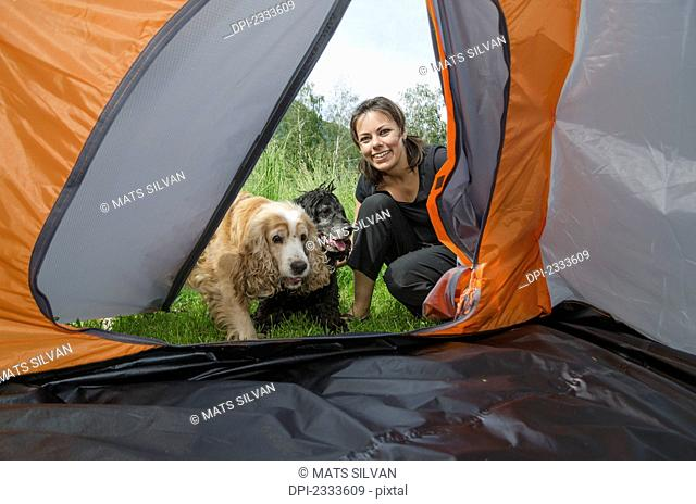 A woman and her two dogs look into the doorway of a tent;Locarno ticino switzerland
