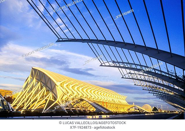 Príncipe Felipe Sciences Museum and at right the Umbracle,City of Arts and Sciences, by S  Calatrava  Valencia  Spain