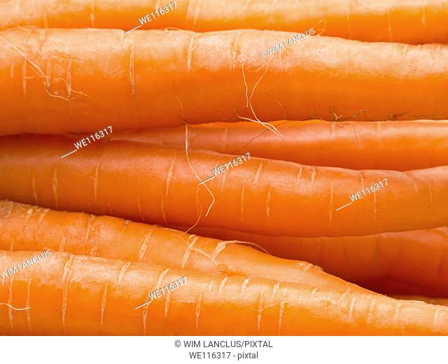Macro shot of stacked fresh carrots