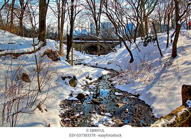 semi frozen river in Central Park near the Lake