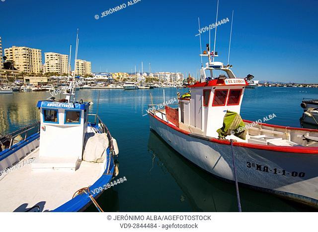 Fishing boats. Fishing port, Estepona. Malaga province Costa del Sol. Andalusia Southern Spain, Europe