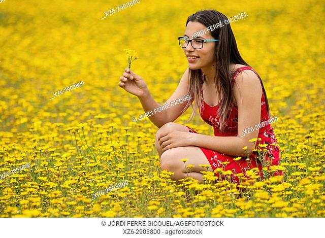 Girl with a red dress picking up flowers in a yellow field