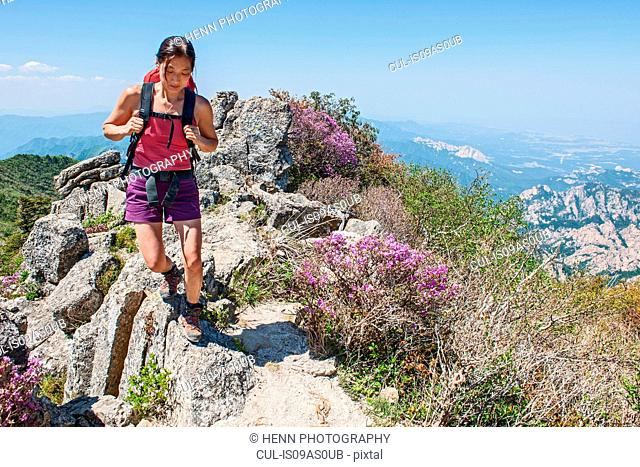 Female hiker walking ridge on way to Daecheongbong peak, Seoraksan National Park in South Korea