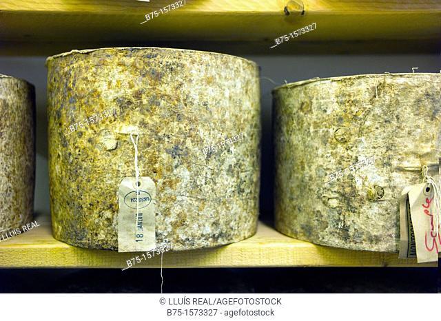 Borought Market, London, England, UK, Neals Yard, montgomery cheddar cheese