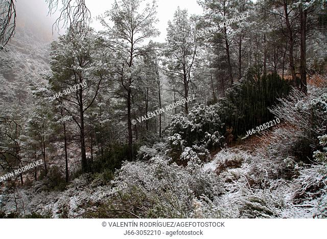 Winter landscape in the ravine Arquela in Chelva. Valencia