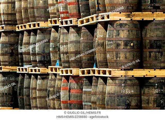 Cuba, Mayabeque province, San Jose Del Las Lajas, Havana Club rum government distillery, aging cellar