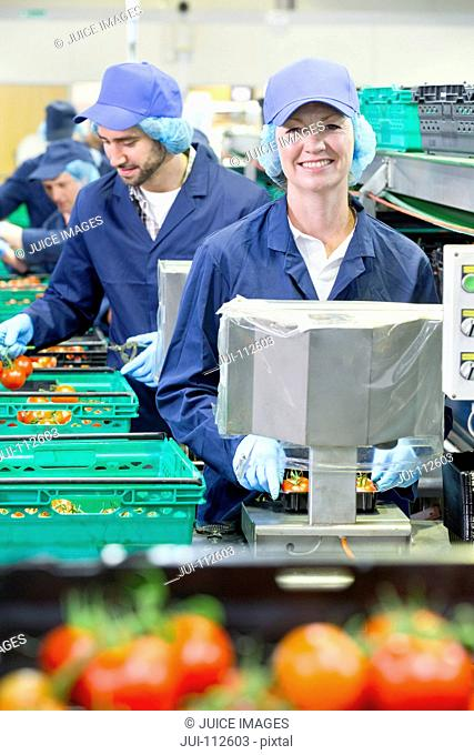 Portrait smiling worker packing tomatoes in food processing plant