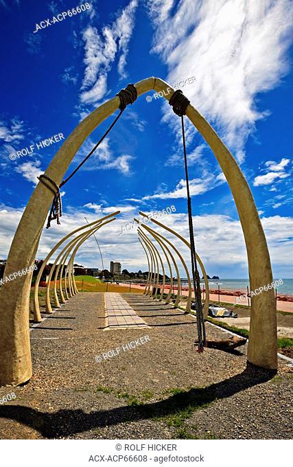 Whale Bone display (work in progress) called 'Tutunui's Garden' by Kim Jarrett, along the Foreshore Coastal Walkway in New Plymouth, Taranaki, North Island
