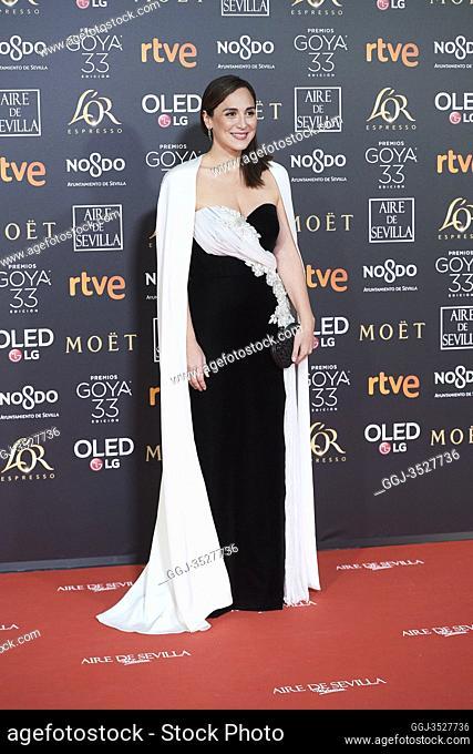 Tamara Falco attends 33rd Goya Cinema Awards 2019 at Palacio de Congresos y Exposiciones FIBES on February 2, 2019 in Sevilla, Spain