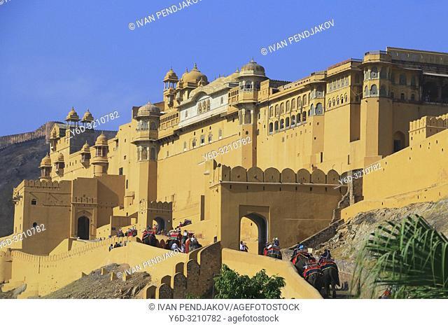 Amer Fort, Rajasthan, India