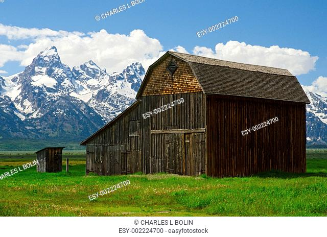 Old barn and The Teton Mountain Range in early summer, Grand Teton National Park, Teton County, Wyoming, USA