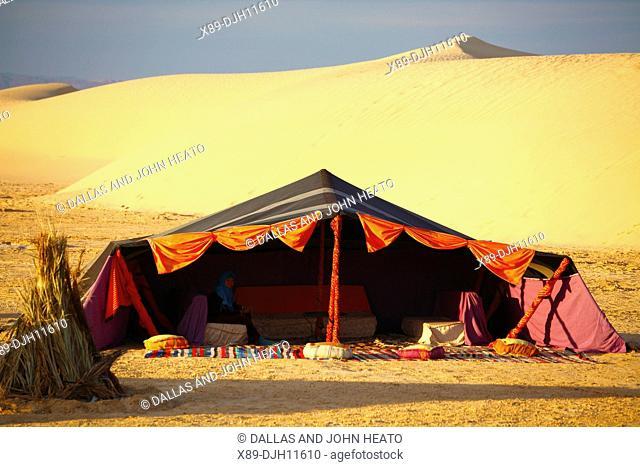 Africa, Tunisia, Nefta, Sahara Desert, Ong El Djemel, Berber Tents, Berber Woman