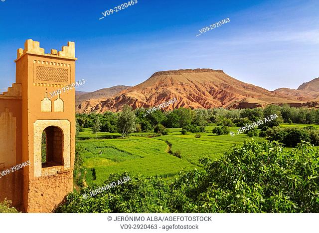 Kasbah. Dades Valley, Dades Gorges, High Atlas. Morocco, Maghreb North Africa