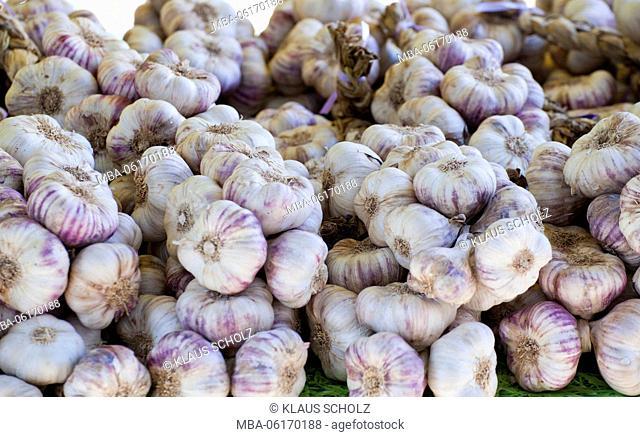 Garlic bulbs at the market