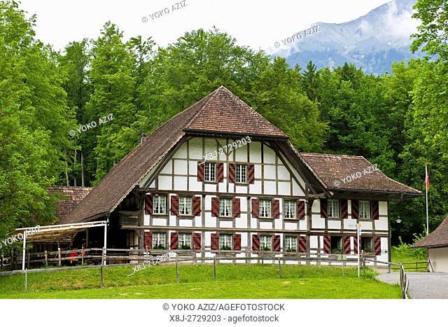 Traditional house, Ballenberg museum, Hofstetten, Switzerland