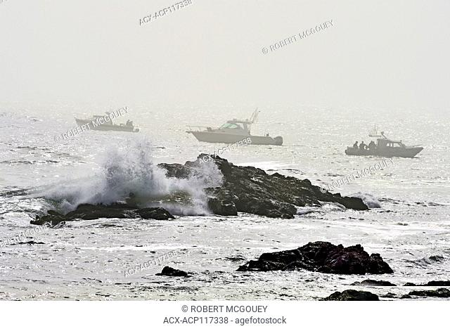 Thee boats brave the fog and the rough water to fish for salmon off the coast of British Columbia Canada