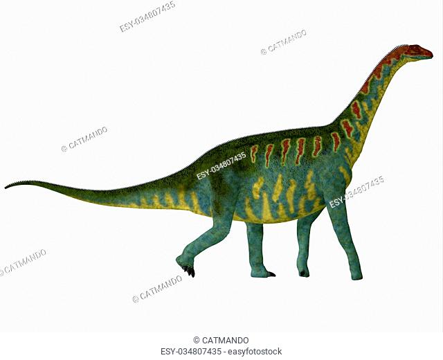Jobaria was a herbivorous sauropod dinosaur that lived in the Jurassic Period of the Sahara Desert in Africa