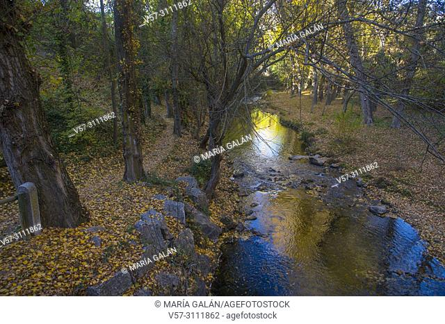 Eresma river in Autumn. Segovia, Spain