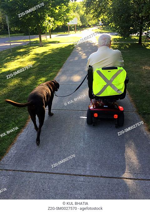 A senior man rides a scooter, his dog walking along, on a summer afternoon in a big park, Ontario, Canada