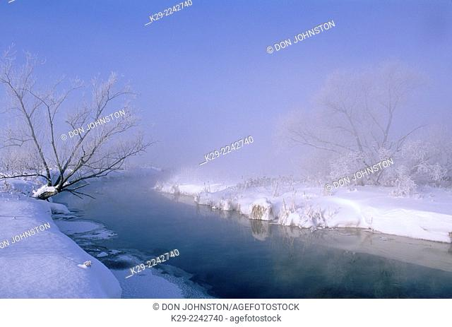 Foggy Junction Creek shoreline and frosted black willow, Greater Sudbury, Ontario, Canada
