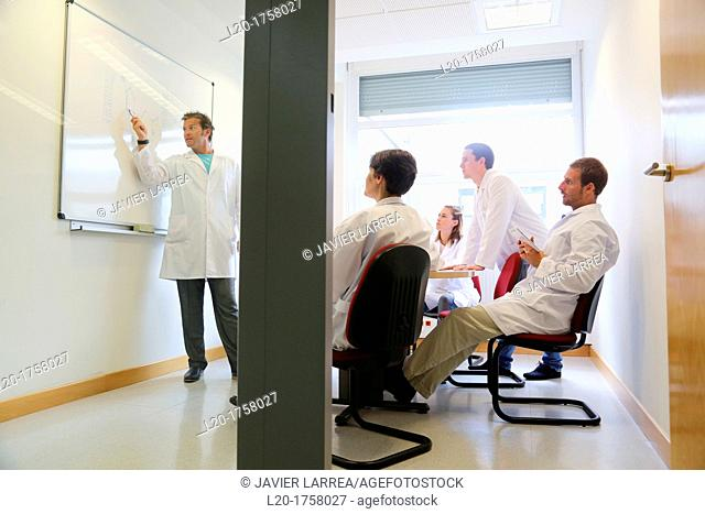 Researchers, Meeting, Tecnalia Foundation, Technology and Research Centre, San Sebastian Technological Park, Donostia, Gipuzkoa, Basque Country, Spain