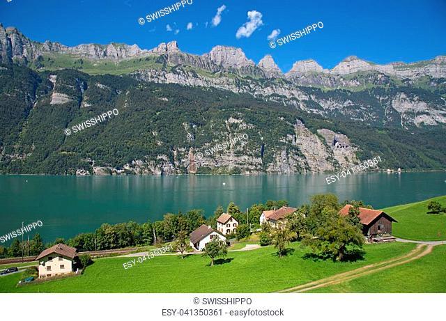 Summer landscape in the Walensee region (Churfirsten mountain range in Swiss Alps)