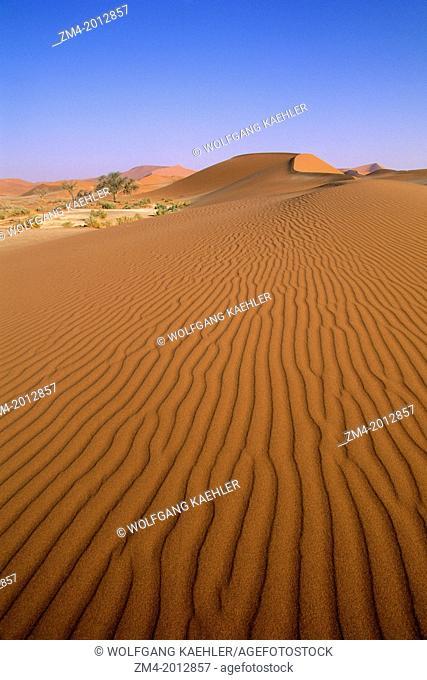 NAMIBIA, NAMIB-NAUKLUFT NATIONAL PARK, SOSSUSVLEI, SAND DUNES