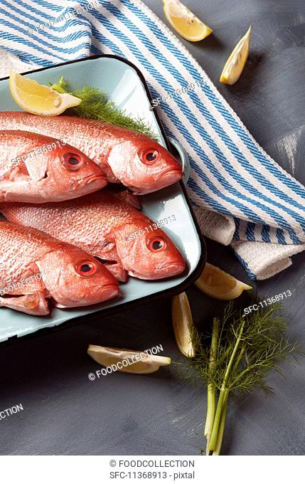 Fresh red snapper with dill and lemons
