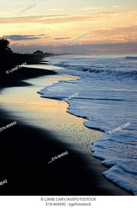 Beach sunrise, costa rica