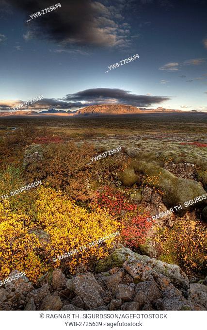 Thingvellir National Park in the autumn, Iceland. . Unesco World Heritage Site