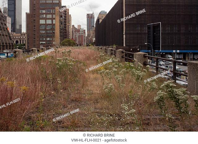 THE HIGH LINE + DILLER SCOFIDIO & RENFRO
