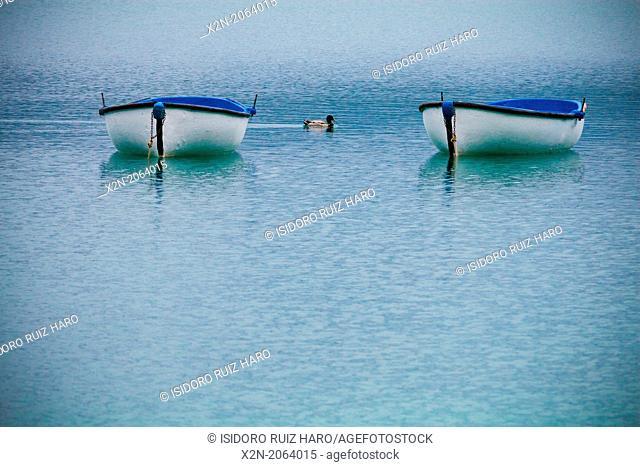 Estany de Banyoles lake, Banyoles, Pla de l'Estany, Girona province, Catalonia, Spain