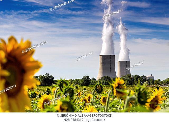 Golfech Nuclear Power Plant and sunflowers field, Tarn et Garonne, France, Europe