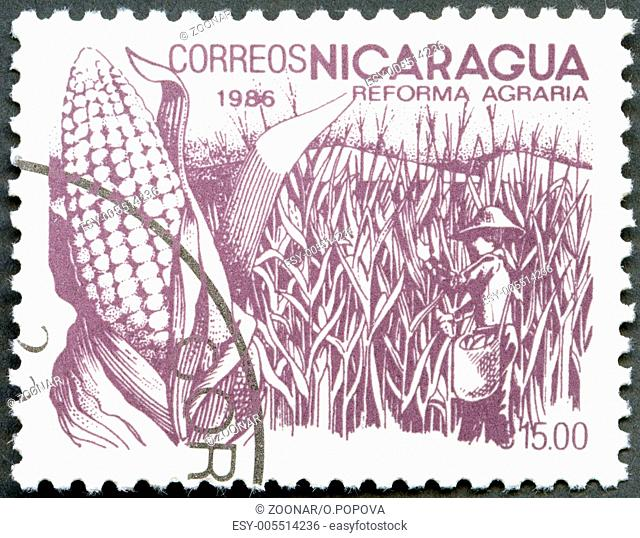 NICARAGUA - 1986: shows image of agrarian reform, Corn