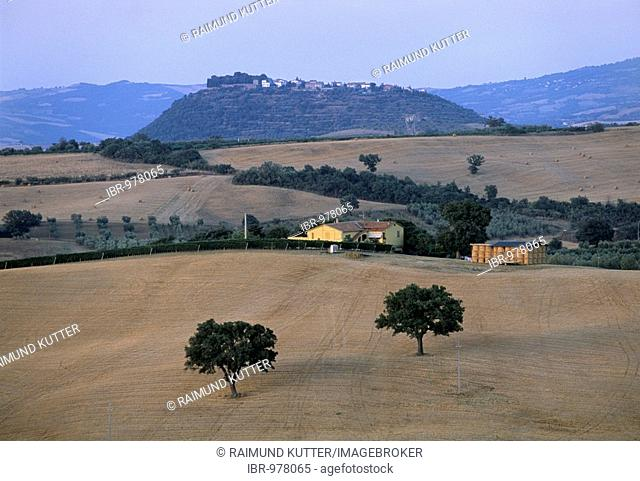 San Angelo in Colle, at front harvested wheat fields near Cinigiano, Province of Grosseto, Tuscany, Italy, Europe