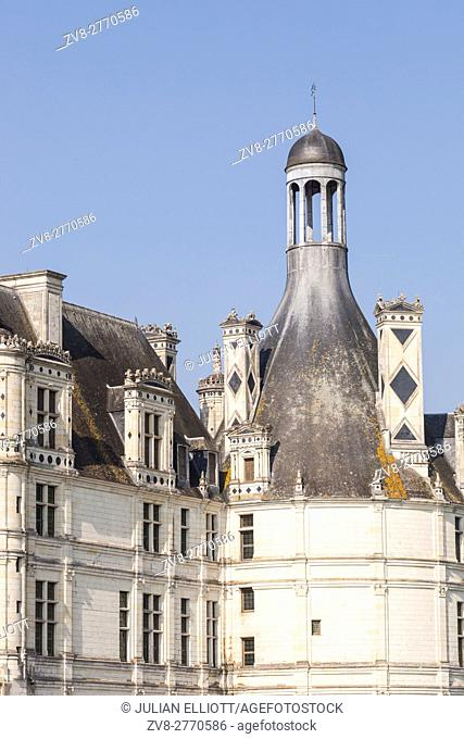 Detail shot of the roof of chateau Chambord