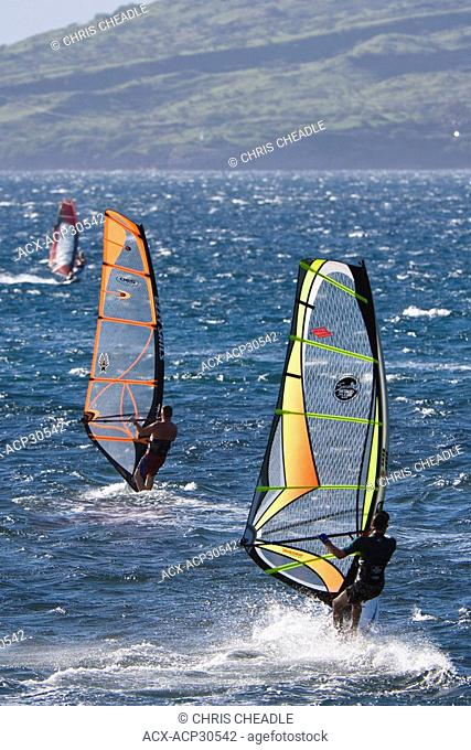 Windsurfing, Maalaea Bay, Kiei, Maui, Hawaii, United States