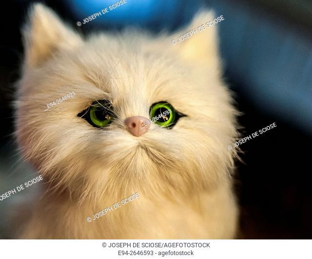 Close up of a toy kitten stuffy
