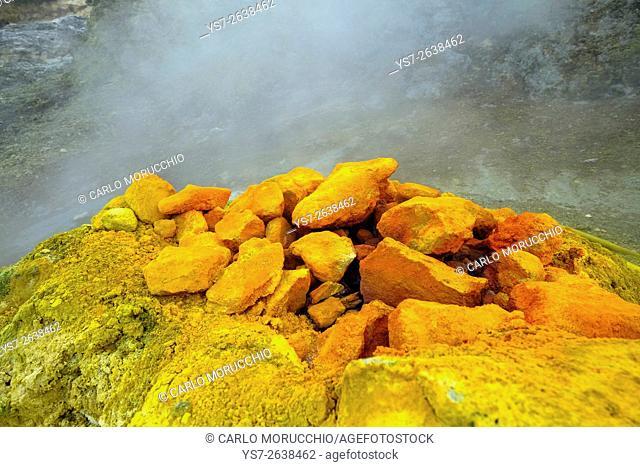 Solfatara, volcanic crater with active fumaroles, Pozzuoli, Naples, Campania, Italy, Europe