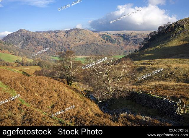 View over Scaleclose Gill beside High Doat over the Borrowdale Valley and Grange Fell beyond in the Lake District National Park, Cumbria, England
