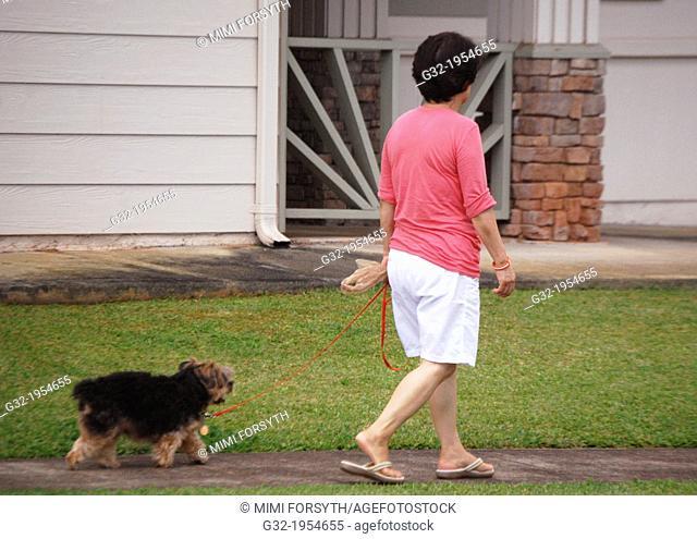 Woman walks dog on leash, Hawaii, USA