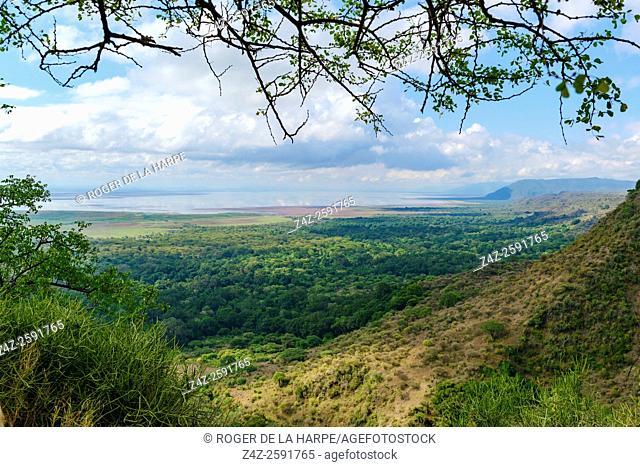 Lake Manyara and Rift Valley Escarpment. Tanzania