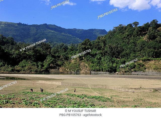 Natural view of hilly area of Thanchi Bandarban, Bangladesh December 2009